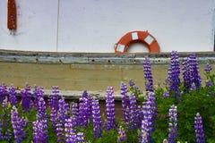 Nationalparker av Alaska arkivfoton