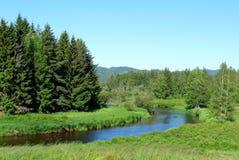 nationalparkflod Royaltyfria Foton