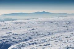 NationalparkKrkonose jätte- berg Denna är vägen till Stezkaen - det högsta berget av Tjeckien Solig vinterdag royaltyfri bild