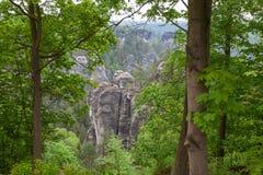nationalparksaxon switzerland germany Arkivfoto