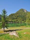 nationalparkslovenia triglav arkivbilder