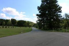 Nationell Arboretum för Förenta staterna royaltyfria bilder
