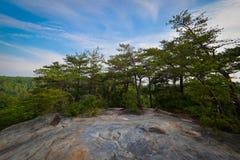 nationell fritids- flod södra tn för stor gaffel Royaltyfri Bild