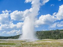 nationell gammal park yellowstone för trogen geyser arkivfoton