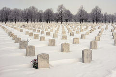 Nationell kyrkogård WW2 Arkivfoto