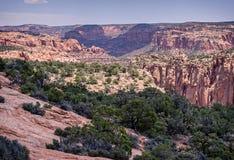 Nationell monument för Navajo Royaltyfria Foton