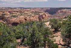 Nationell monument för Navajo Royaltyfri Fotografi
