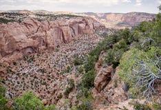 Nationell monument för Navajo Arkivbilder