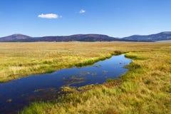 Nationell Preserve för Valles Caldera arkivfoton