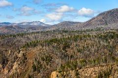 Nationell Preserve för Valles Caldera royaltyfri bild