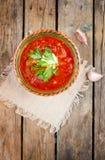 Nationell röd soppaborsch för ukrainare och för ryss Arkivbild