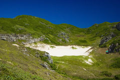nationell södra ogasawarapark för ö Arkivbilder