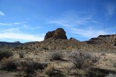 Nationell sylt för Mojave royaltyfri fotografi
