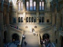 Nationellt historiemuseum London Arkivbild