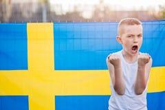 nationellt sweden för fotboll lag Royaltyfri Foto