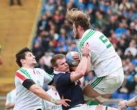 NATIONER 2014 för RBS 6 - ITALIEN vs SKOTTLAND; JOSHUA FURNO Royaltyfri Fotografi