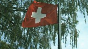Nationsflagga av Schweiz stock video