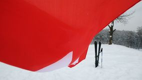 Nationsflagga av Schweiz som vinkar i vinden stock video