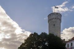 Nationsflaggan av Estland som vinkar på det högväxta Hermann tornet av den Toompea slotten, Tallinn, Estland fotografering för bildbyråer