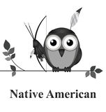 Native American Royalty Free Stock Photo