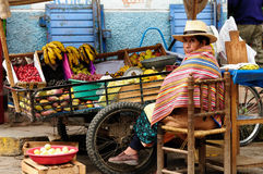 Native American from Bolivia selling fruits from the wheelbarrow on city streets royalty free stock photos