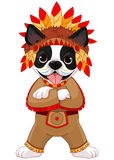 Native American Boston Terrier Royalty Free Stock Photography
