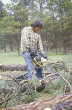 Native American cutting wood Royalty Free Stock Photography