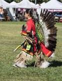 Native American Dancer at a Pow-Wow Royalty Free Stock Image