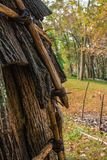 Native American Hut and Fall Trees stock photography