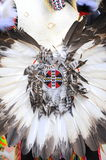 Native american. Royalty Free Stock Photos