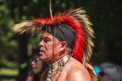 Native American Indian Royalty Free Stock Photo