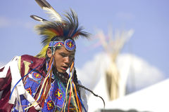 Native American man in full dress. Royalty Free Stock Images