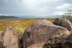 Native American petroglyphs stock image
