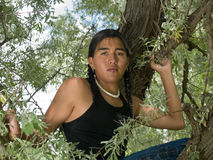 Native American teenage boy. Handsome 15 year old Native American boy sitting in a tree Royalty Free Stock Photo