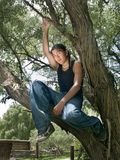Native American teenage boy. Handsome 15 year old Native American boy sitting in a tree Royalty Free Stock Photography