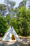 Native American Teepee. A Native American teepee in a wooded clearing stock image
