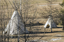 Native American tents in the field Stock Photo