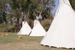 Native American Tipis Stock Photography