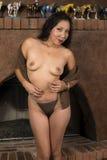 Native American woman Royalty Free Stock Photos