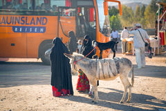 Native arabic women with donkey and goat. Unidentified arabic women with goat and donkey  posing to pictures for money on the local bus station on 10 Apr 2013 Royalty Free Stock Image