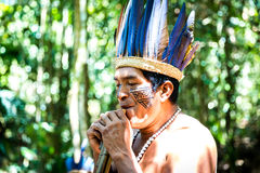 Native Brazilian guy playing wooden flute at an indigenous tribe in the Amazon.  royalty free stock image