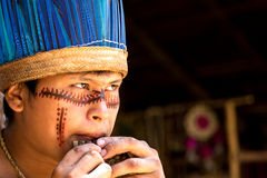 Native Brazilian guy playing wooden flute at an indigenous tribe in the Amazon.  royalty free stock images