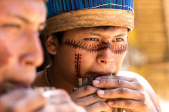 Native Brazilian guys playing wooden flute at an indigenous tribe in the Amazon Stock Photos