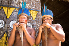 Native Brazilian guys playing wooden flute at an indigenous tribe in the Amazon Royalty Free Stock Photography