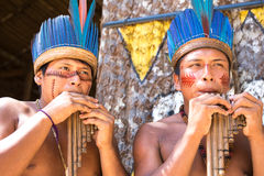 Native Brazilian guys playing wooden flute at an indigenous tribe in the Amazon.  royalty free stock photos