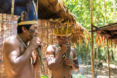 Native Brazilian guys playing wooden flute at an indigenous tribe in the Amazon Royalty Free Stock Image