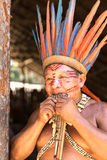 Native Brazilian man playing wooden flute at an indigenous tribe in the Amazon.  royalty free stock images