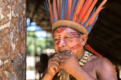 Native Brazilian man playing wooden flute at an indigenous tribe in the Amazon Stock Photo