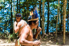 Native Brazilian people dancing at an indigenous tribe in the Amazon.  stock image