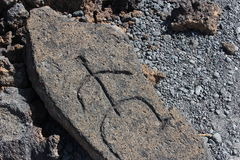 Native Hawaiian Petroglyph Carving Royalty Free Stock Images
